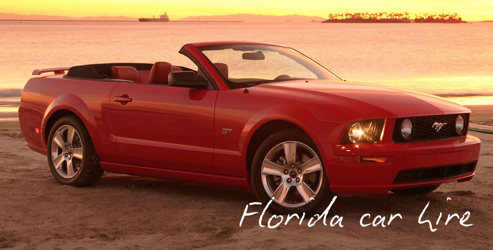 Car Rentals In Florida